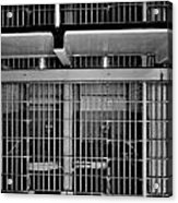 Jail Cells Acrylic Print