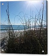 January On A Florida Beach Acrylic Print