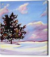 January Acrylic Print