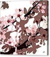 Japanese Blossom Acrylic Print by Sarah OToole