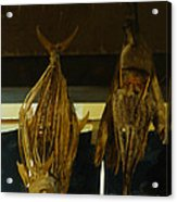 Japanese Fish And Seafood Dried Decoration Acrylic Print