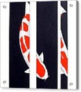 Japanese Koi Kohaku Division Painting Acrylic Print