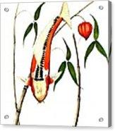 Japnese Koi Shuisui Chinese Lantern Painting Acrylic Print