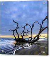 Jekyll Island Seascape Acrylic Print