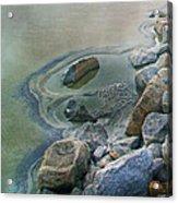 Jekyll Island Tidal Pool Acrylic Print