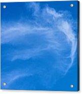 Jellyfish Cloud Acrylic Print