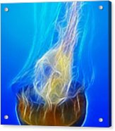 Jellyfish Fractal Acrylic Print