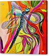 Jenny's Dragonfly In Acrylic Acrylic Print