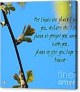 Jeremiah 29 Acrylic Print