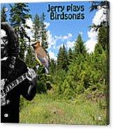Jerry Plays Birdsongs Acrylic Print