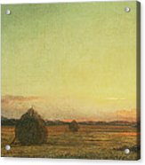 Jersey Meadows Acrylic Print