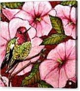 Jewel Among Blooms Acrylic Print