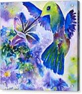 Jewel In Flight Acrylic Print