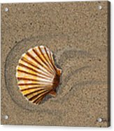 Jewel On The Beach II Acrylic Print