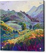 Jeweled Hills Acrylic Print