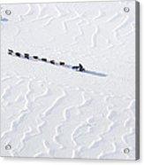 John Bakers Team Running Down Frozen Yukon River  Acrylic Print