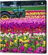 John Deere In Spring Acrylic Print