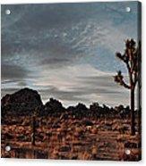 Joshua Tree Hidden Valley Panorama Acrylic Print