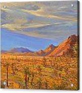 Joshua Tree National Park 2 Acrylic Print