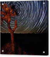 Joshua Tree Star Trails Acrylic Print