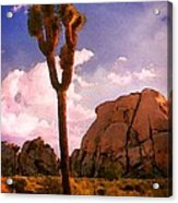 Joshua Trees 2 Acrylic Print