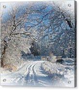 Journey Into Winter Acrylic Print by Teresa Schomig