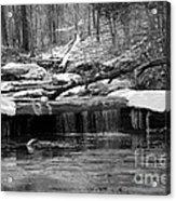 Joy Falls Kentucky  Acrylic Print
