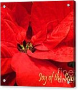Joy Of The Season Acrylic Print
