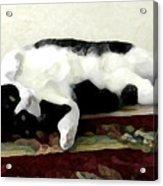 Joyful Kitty Acrylic Print