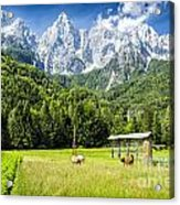 Julian Alps Farm Acrylic Print