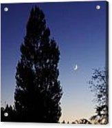 Julian Night Sky 2013 A Acrylic Print