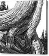 July 12 Acrylic Print by Doug Fluckiger