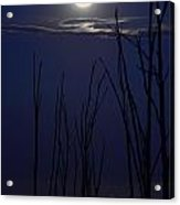 July 2014 Super Moon Acrylic Print
