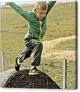 Jumping Haystacks Acrylic Print
