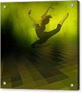 Jumping In Acrylic Print by Gun Legler