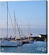 June Morning - Lyme Regis Harbour Acrylic Print
