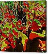 Jungle Abstract Acrylic Print