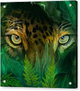 Jungle Eyes - Jaguar Acrylic Print