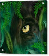 Jungle Eyes - Panther Acrylic Print