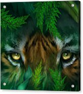 Jungle Eyes - Tiger Acrylic Print