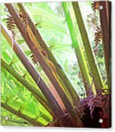 Jungle Fever Acrylic Print