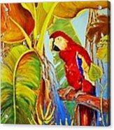 Jungle Flame Acrylic Print
