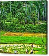 Jungle Homestead - Paint  Acrylic Print