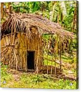 Jungle Hut In A Tropical Rainforest Acrylic Print by Colin Utz