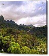 Jungle Landscape Acrylic Print