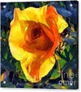 Jungle Rose Acrylic Print