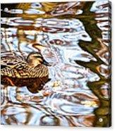 Jungle Water Acrylic Print