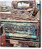 Junk Or Treasure Acrylic Print