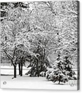 Just After A Snowfall Acrylic Print by Mary Machare