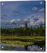 Just Another Day In Maine Acrylic Print